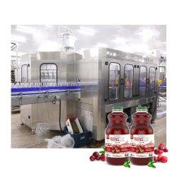 Полностью автоматическая стеклянную бутылку в основном мякоти плодов Сок горячего наполнения производственной линии розлива оборудование для производства напитков машины