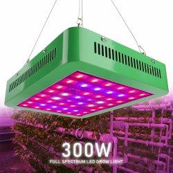 Haute puissance LED rouge bleu 300W grandir avec réflecteur du panneau de 120 degrés