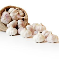 China Nova cultura melhor Alho fresco por grosso roxo de alta qualidade de alho fresco/Alho/Ail/Ajo com folga certificadas// Kosher Natural Halal alho branco preço baixo