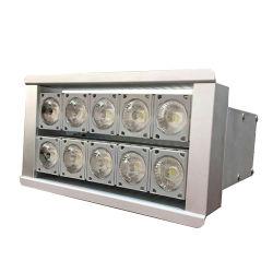 indicatore luminoso di inondazione Hest-Resistente eccellente di 100W LED per la fonderia IP66