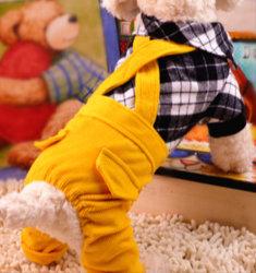 Desgaste de traje de perro de peluche