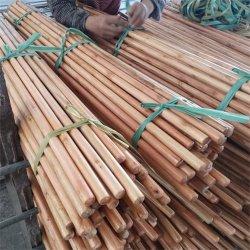 [120كم] [150كم] صقل طول عصا خشبيّة مستديرة خشبيّة مكنسة مقبض