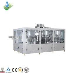 Выжмите сок из производственной линии содержит Juce бумагоделательной машины и фруктов соковыжималки съемника для малого бизнеса