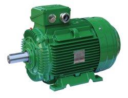 Ie4 우수한 효율성 직물 기계를 위한 삼상 비동시성 감응작용 무쇠 전동기