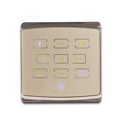 幸運な調子の25Wスピーカーのための費用有効Bluetoothの壁のアンプによってはオーディオ・システムが家へ帰る