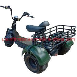 Prix de gros d'usine 1500 W Tricycle électrique du moteur de véhicule agricole Cargo ATV avec ce