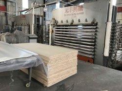 Meubles de Malacca Blockboard de haute qualité pour la décoration et de la construction