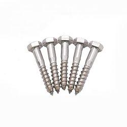 DIN571 из нержавеющей стали с шестигранной головки шурупа Lag винт