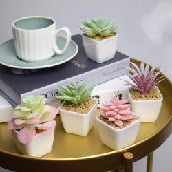가정 장식 사무실 테이블 목욕탕 기숙사 훈장을%s 인공 꽃 가짜 Succulents 12PCS 소형 플라스틱 화분에 심는 인공적인 플랜트가 가짜 Succulent에 의하여 설치한다