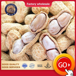 Fábrica chinesa salgados torrado Mix Nuts/Caju amendoim :
