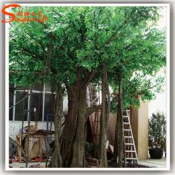Evergreen falso árbol Ficus artificial de plástico en vivo