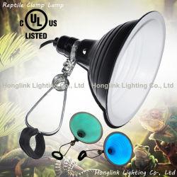 Écologique UL E26 Reptile Pet avec Lampe pince Glow Light