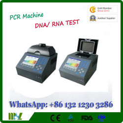 DNA /Rnaのポリメラーゼの連鎖反応PCRの検光子