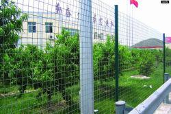 O gerador de Euro Holland revestimento de PVC de malha de arame de ferro galvanizado malha de arame soldado Compensação Animal
