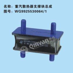 *SinotruckのラジエーターサポートWg99255300641