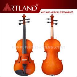 Costume de violon de contreplaqué Antique finition brillante
