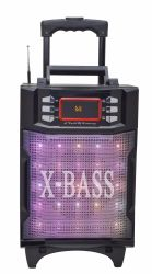 De Radio Draagbare Radio van de FM met Spreker USB/TF/Rechargeable/Bluetooth