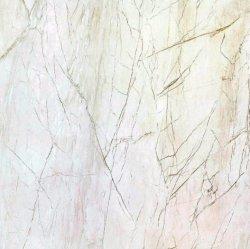Los materiales de construcción completa de color verde porcelana esmaltada piso (800x800mm)