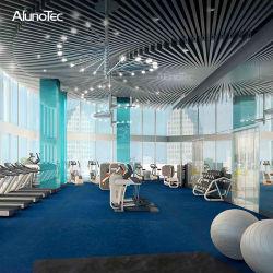 Alunotec Streifen-Aluminiummetalldecken-Dekoration für Innen