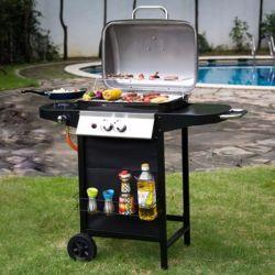 Het nieuwe Fornuis van de Barbecue van het Ontwerp Multifunctionele Geroosterde