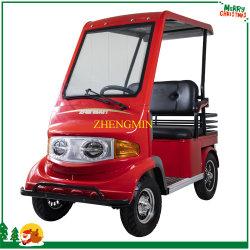 Modieuze groene energie Adult 4 Wheel Leisure Elektrische auto met CE