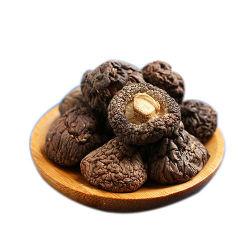 Champignon Shiitake déshydratés séchés de l'argent Mushroom 2-3cm