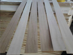 Alta calidad de las tiras de madera de Paulownia tira de madera para la decoración