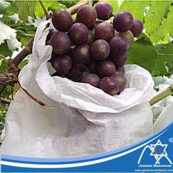 La Chine des produits de recycler les sacs PP Spunbond nontissé de raisin,