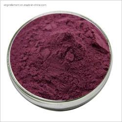 뜨거운 판매 제품 천연 크랜베리 과일 추출물 안토시아닌 색상 분말 HPLC를 통해