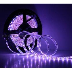 SMD 5050 RGBW مصباح LED شريط الضوء 24 فولت 84 مصباح LED لكل قد يتوفر لون RGB وAmber للمتر