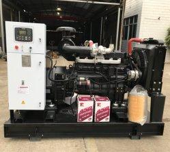 Ricardo moteur diesel générateur électrique de type ouvert 80kw 100kVA