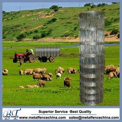Rete fissa poco costosa del pascolo di prezzi per le pecore