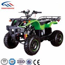 Strumentazione ATV 150cc dell'azienda agricola del rifornimento della Cina