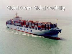 Het betrouwbare Overzeese Verschepen en Lucht die van Guangzhou aan Costa Rica verschepen