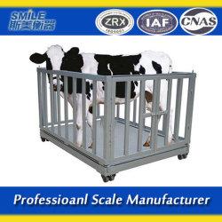 大型計量用のさまざまな動物用スケール
