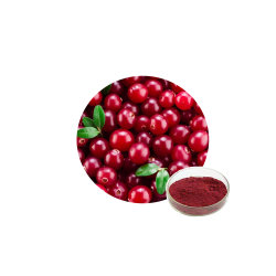 Natürliche Preiselbeeren Fruchtextrakt Pulver Proanthocyanidin Preis