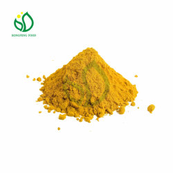 2021 Nuova stagione Ginger Dry Powder for General Seasoning