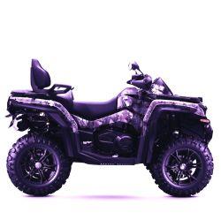 Version de 2020 800cc ATV 4X4 Quad