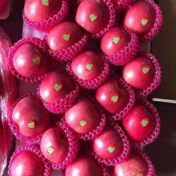 신선한 깍둑썰기한 크리스탈 레드 스타 그린 후라누우 골든 도매 맛있는 갈라 칭안 후지 공장 공급업자로부터 나온 애플 가격