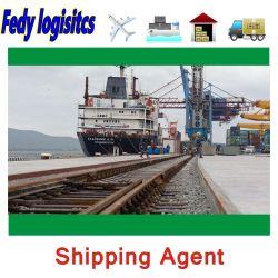 DDP 海上輸送 / 航空輸送 / 鉄道輸送運送業者からオランダ / ベルギー / ポーランド / チェコ共和国へ FBA Amazon Export Agents Logistics は Express を評価します