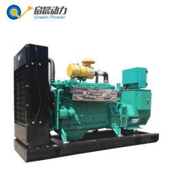 Générateur de gaz naturel GNC de GNL 80kw avec la cogénération La cogénération