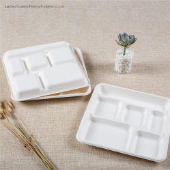 [سوغركن] مستهلكة قابل للتفسّخ حيويّا [فوود كنتينر] أداة مائدة سكّين