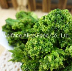 Здоровые закуски питание овощи низкая температура обжаривания вакуумную упаковку Vf брокколи