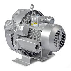 De vacuüm Groente die van de Ventilator van de Holding Regeneratieve Regeneratieve Ventilator drogen