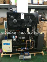 Bitzer Gel du compresseur de défilement Unité de condensation