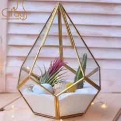 탁상 다즙 플랜트 재배자를 위한 도매 불규칙한 유리제 금 기하학적인 Terrarium
