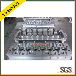 24 Kammer-Nadelventil-heiße Seitentriebs-Vorformling-Form (YS1210)