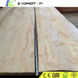PIN/Birch/MLH/Bintangor / Okoume placage bois pour l'Inde/Indonésie/, Malaisie/ Philippines