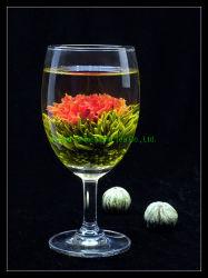 De organische Bloeiende Thee van de Bloem