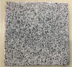Het nieuwe G654 Donkere Grijze Graniet, Padang Donker Grijs Graniet, de Tegels van het Graniet, de Randen van het Graniet, vlamde/het Natuurlijke Graniet van de Straatsteen van de Spleet/van de Ananas Nieuwe G654 Grijze